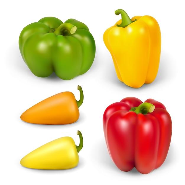 Establecer peppersr realista. la ilustración contiene malla de degradado. Vector Premium