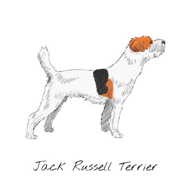 Estilo de dibujo de ilustración de perro vector gratuito