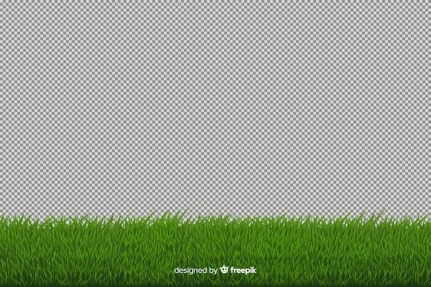 Estilo realista de hierba verde frontera vector gratuito