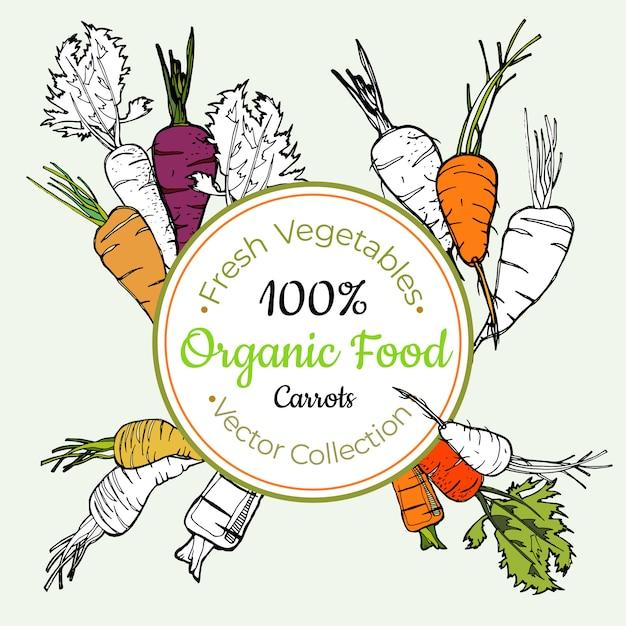 Etiqueta de comestibles de zanahoria Vector Premium