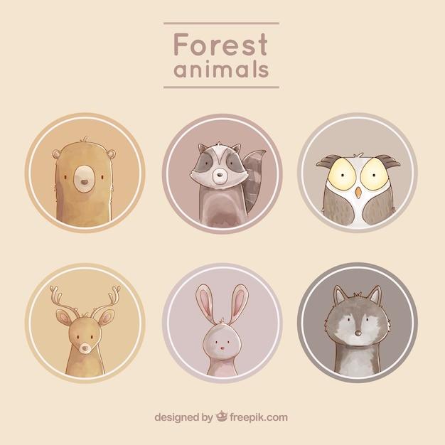 Etiquetas con animales simpáticos con fondos redondeados vector gratuito