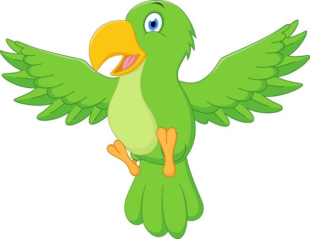 Feliz Loro De Dibujos Animados Volando Lindo Caracol De
