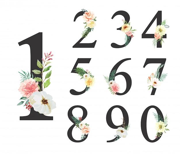 Flor acuarela número 0-9 colección. Vector Premium