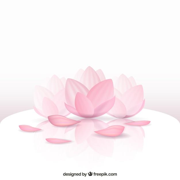 Flor de loto hermosa vector gratuito