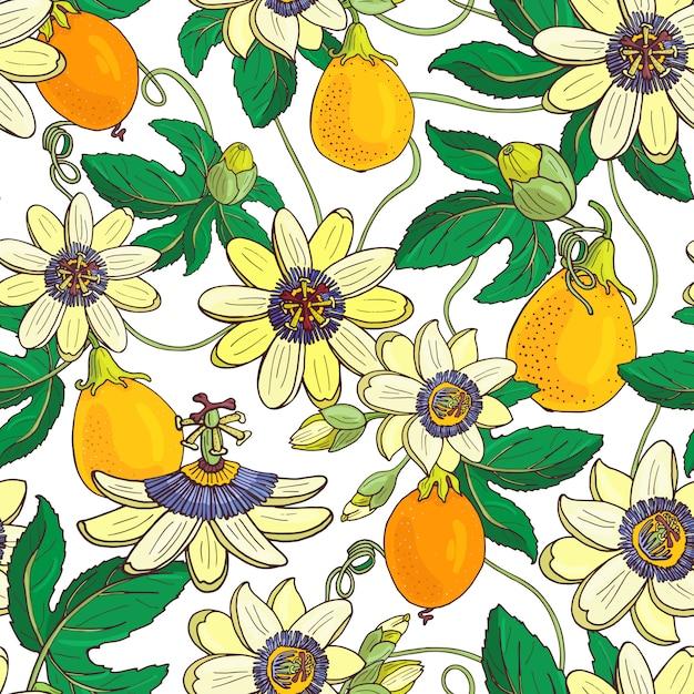 Flor de la pasión pasiflora, patrón de fruta de la pasión sin fisuras Vector Premium