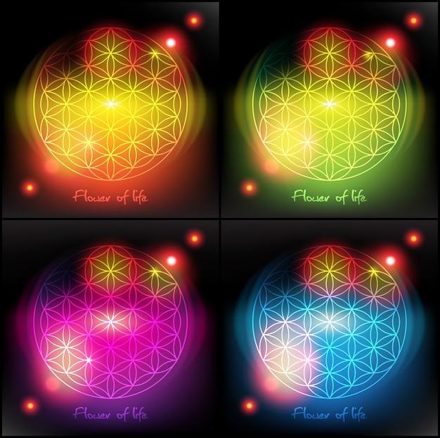 La flor de la vida. geometría sagrada. símbolo. Vector Premium