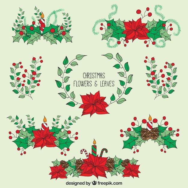 Flores de navidad dibujadas a mano y hojas | Descargar Vectores gratis