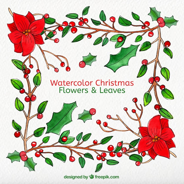 Flores de navidad y hojas en estilo acuarela | Descargar Vectores ...