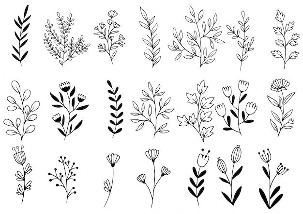 Flores dibujadas a mano Vector Premium
