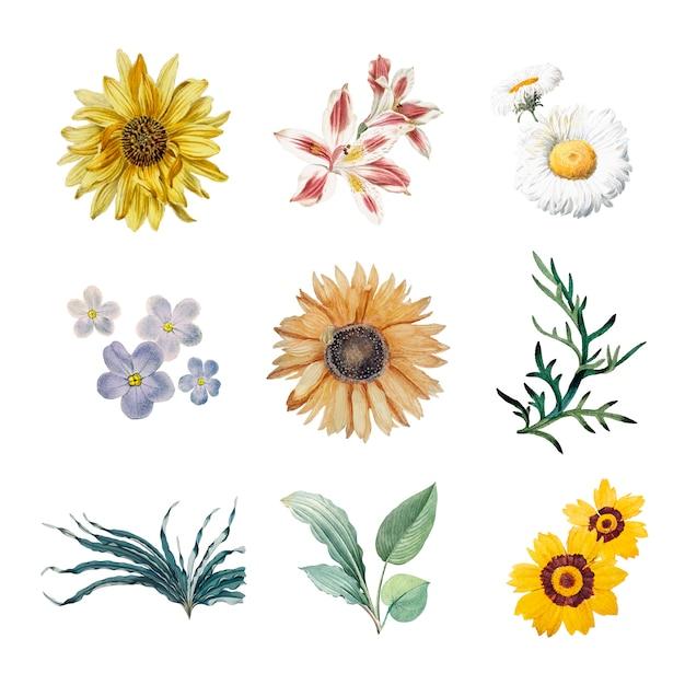 Flores en flor vector gratuito