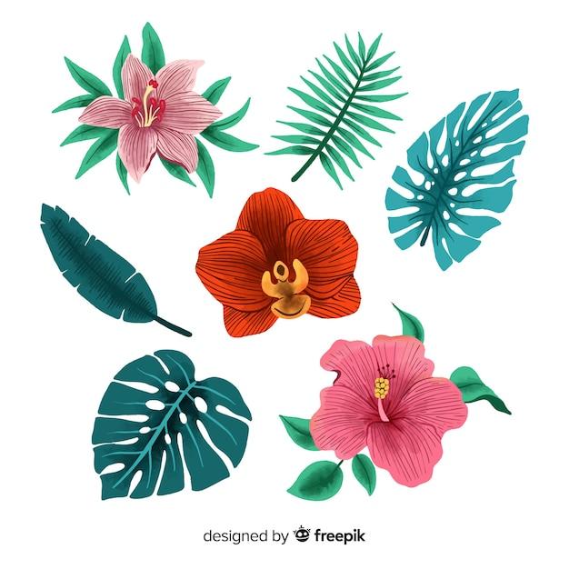 Flores y hojas tropicales dibujadas a mano vector gratuito