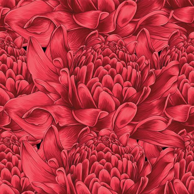 Flores de jengibre antorcha roja de patrones sin fisuras Vector Premium