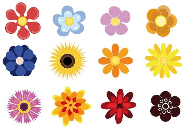 flores lindas Vector Gratis