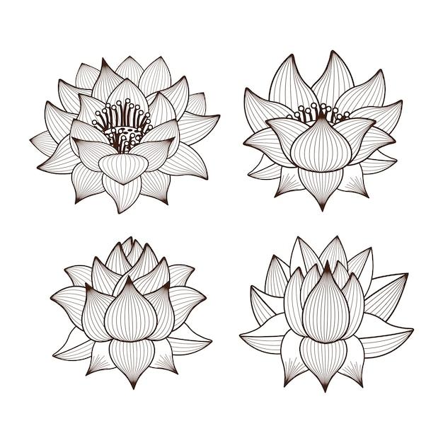 Flores De Loto Dibujo Icono Aislado Diseño Descargar Vectores