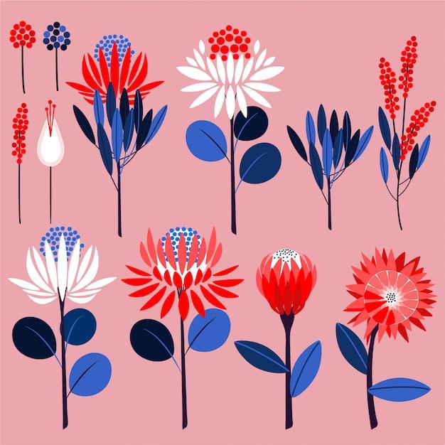 Flores de protea y plantas botánicas. vector de símbolos ornamentales en vector Vector Premium
