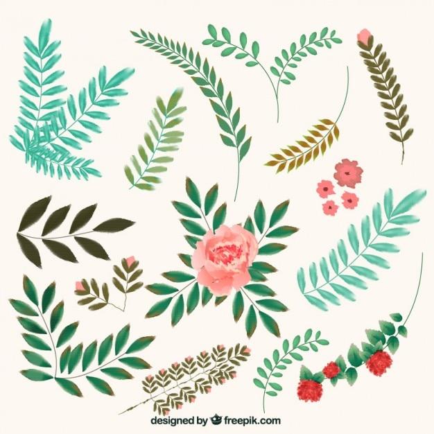 Flores y hojas elementos decorativos descargar vectores for Plantas decorativas hojas