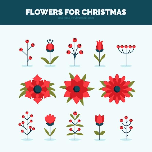 Flores y plantas para el invierno descargar vectores gratis for Plantas para invierno
