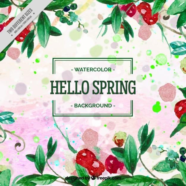Fondo de acuarela de primavera con hojas y frutos rojos | Descargar ...