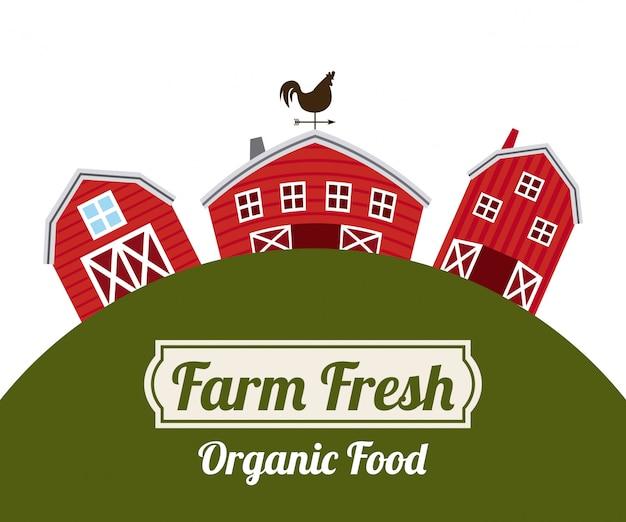 Fondo de alimentos orgánicos frescos de granja vector gratuito