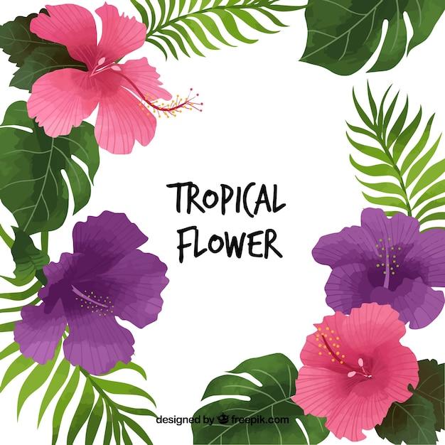 Fondo Bonito De Flores Tropicales Y Hojas Descargar Vectores Gratis