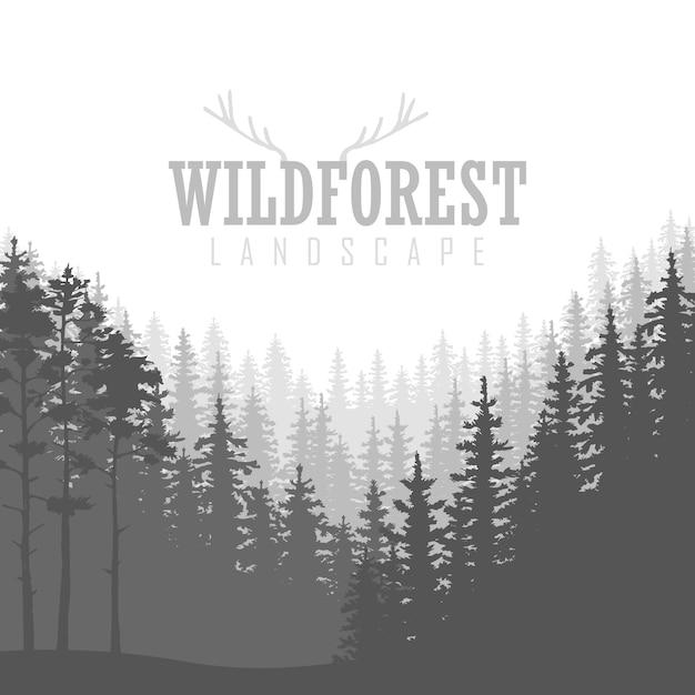 Fondo de bosque de coníferas silvestres. pino, paisaje natural, madera panorama natural. Vector Premium