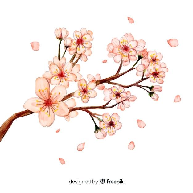Fondo de cerezo en flor vector gratuito