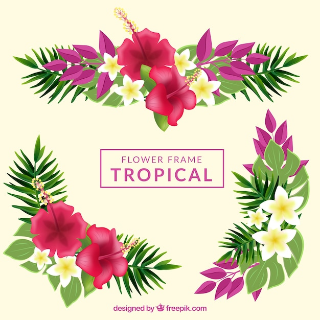 Fondo con marco de flores tropicales | Descargar Vectores gratis