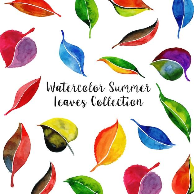 Fondo de colección de hojas de acuarela de verano | Descargar ...