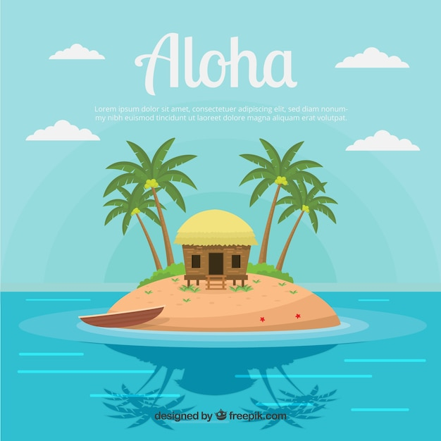 Coconut Island Holidays