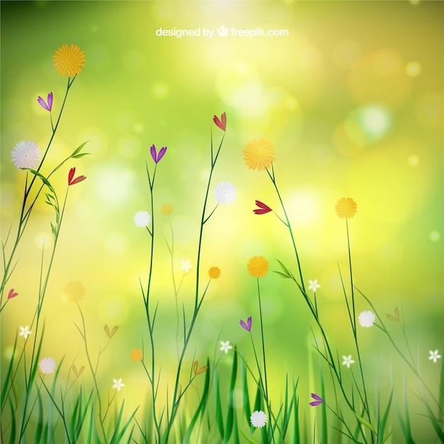 fondo de primavera con flores vector gratis