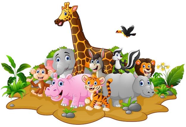 Fondos De Animales Animados: Fondo De Dibujos Animados De Animales Salvajes