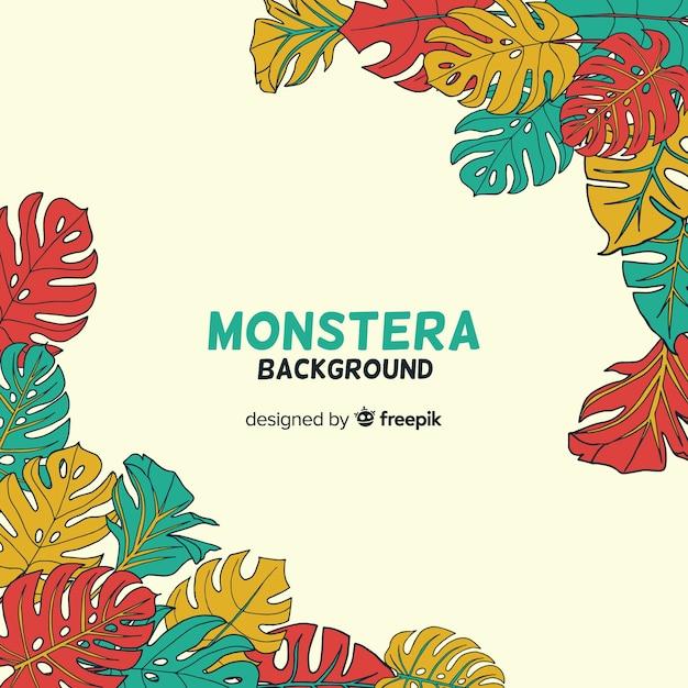 Fondo esquinas hojas de monstera vector gratuito