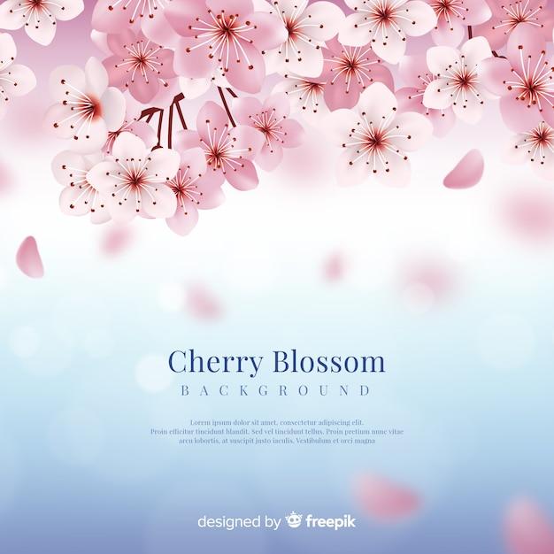 Fondo de flor de cerezo realista vector gratuito