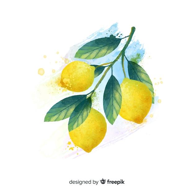 Fondo de frutas en acuarela con limones vector gratuito