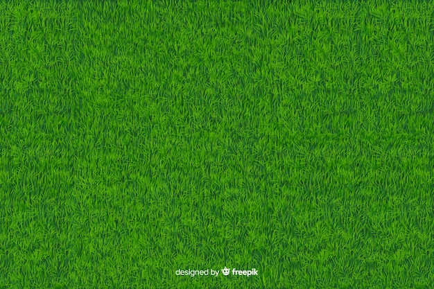 Fondo de hierba verde estilo realista vector gratuito