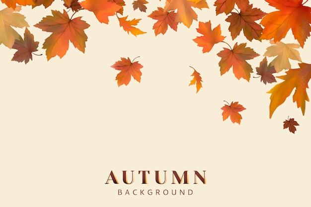 Fondo de hojas de otoño vector gratuito