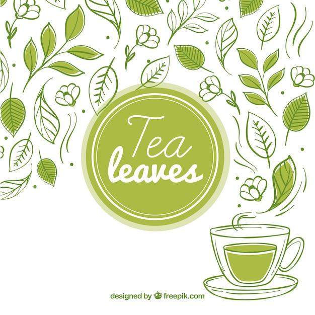Fondo de hojas de té con taza de té vector gratuito
