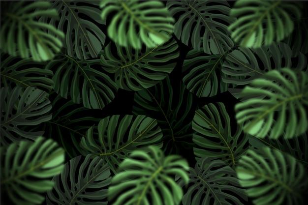 Fondo de hojas tropicales oscuro realista vector gratuito