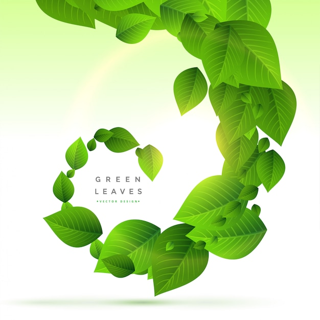 Fondo de hojas verdes en estilo remolino vector gratuito