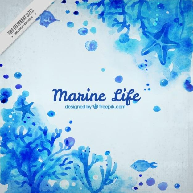 Fondo marino de acuarela azul vector gratuito