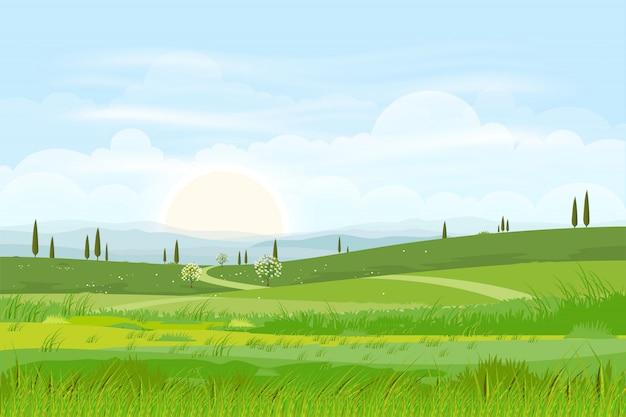 Fondo de paisaje de naturaleza de dibujos animados de verdes colinas con horizonte Vector Premium