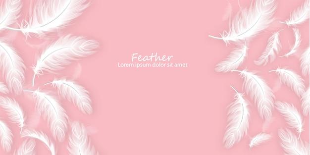 Fondo de plumas Vector Premium