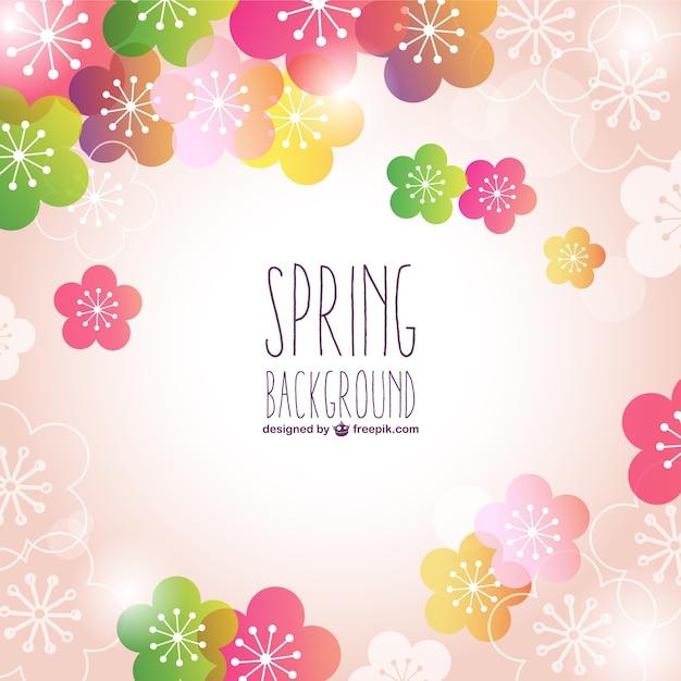 Fondo De Primavera Con Flores De Colores Descargar Vectores Gratis