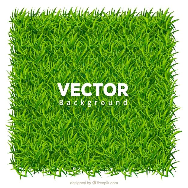 Fondo realista de hierba verde vector gratuito