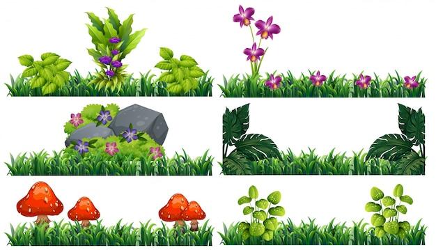 Flores Vectoriales Con Fondo Transparente: Fondo Transparente Con Flores En El Jardín