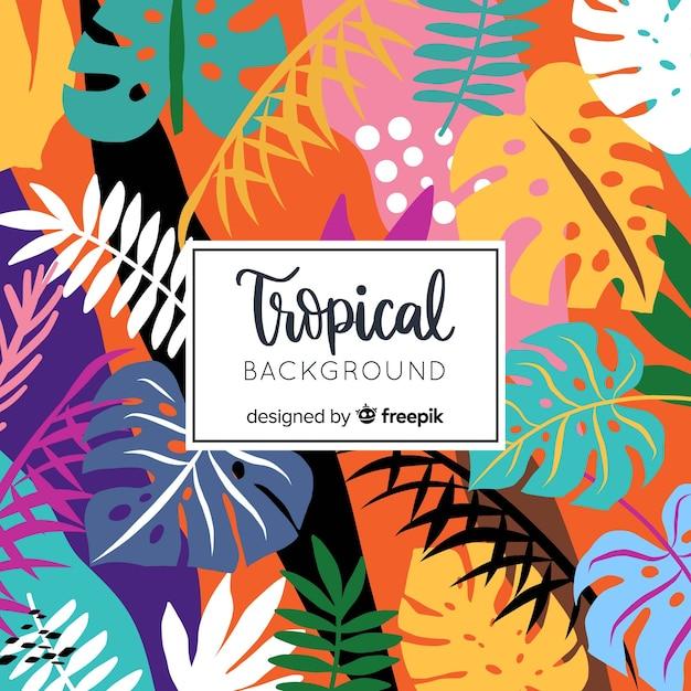 Fondo tropical dibujado a mano vector gratuito