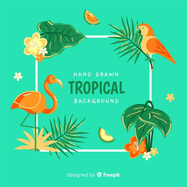 Fondo tropical vector gratuito