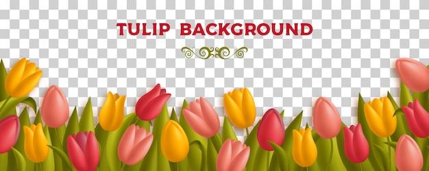 Fondo con tulipanes y hojas. diferentes colores de flores como el amarillo, rojo y rosa. ilustración. Vector Premium