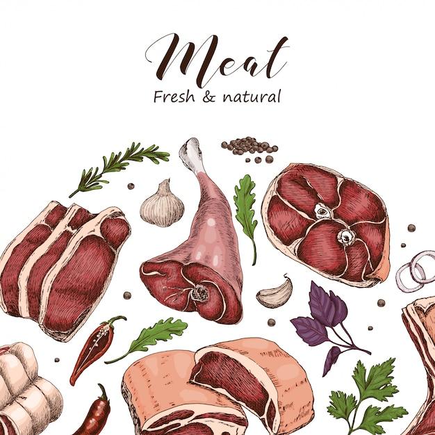 Fondo de vector con diferentes carnes de color Vector Premium