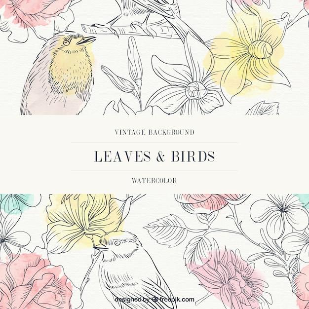 Fondo vintage en acuarela de hojas y pájaros   Descargar
